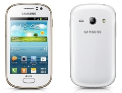 Unlocking by code Samsung Galaxy Fame Lite Duos S6792L
