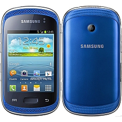 Unlocking by code Samsung Galaxy Music Duos S6012