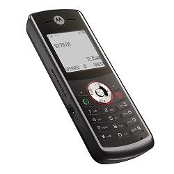 Unlocking by code Motorola W161