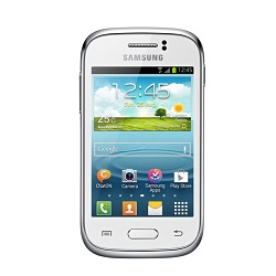 Unlocking by code Samsung Galaxy Young