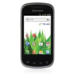 Unlocking by code Samsung Galaxy Ace Q