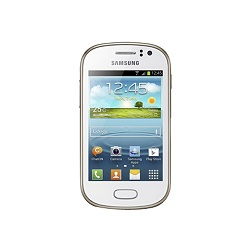 Unlocking by code Samsung GT-S6812i